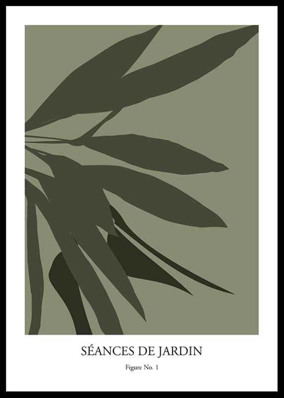 Botanical Graphic No1