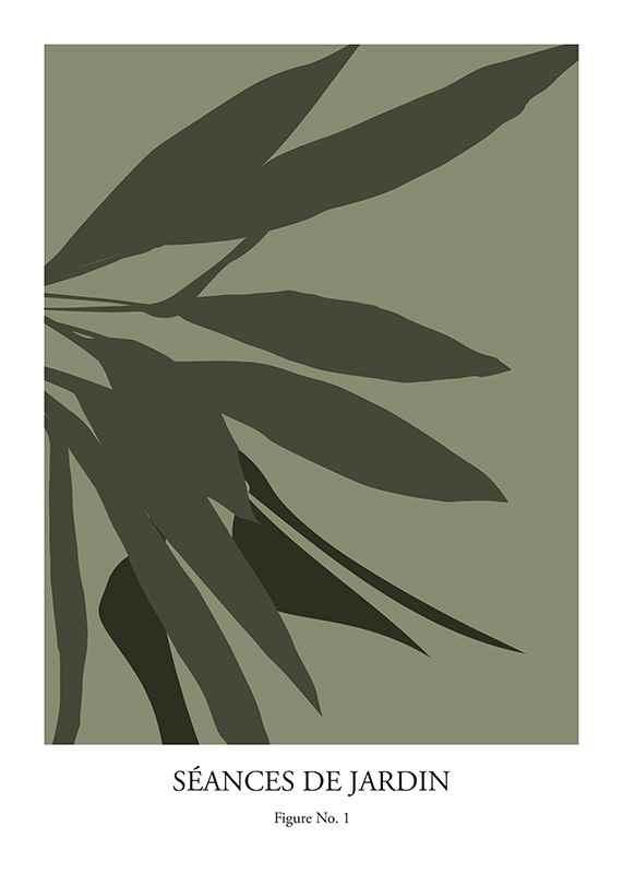 Botanical Graphic No1-1