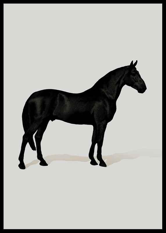 Black Horse Port. Drawing-0