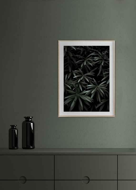 Dark Green No1-4