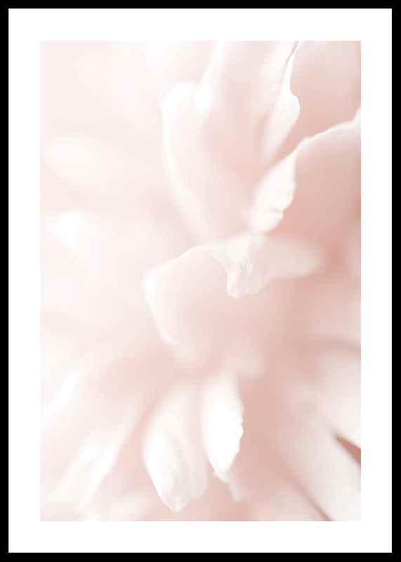 Tender Flowers No3-0