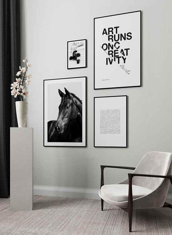 Black Horse-4
