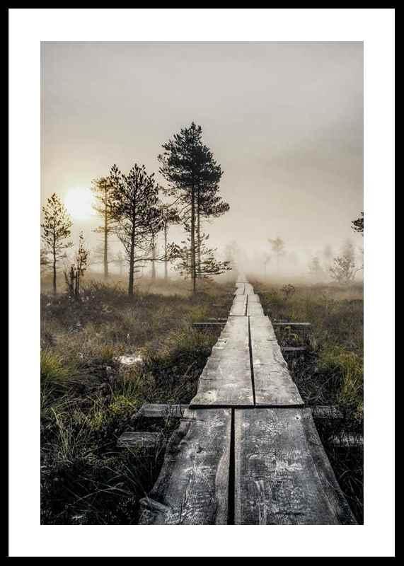Torronsuo Wilderness-0