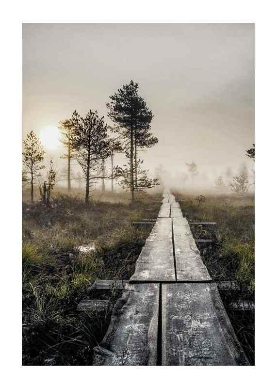 Torronsuo Wilderness-1