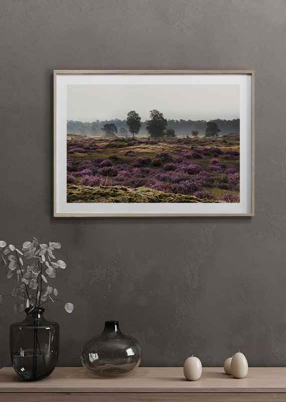 Veluwe Meadow-4