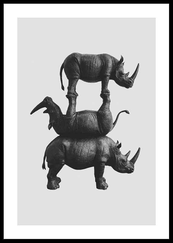 Three Rhinos-0