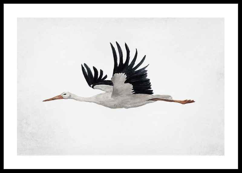 Watercolor Stork-0