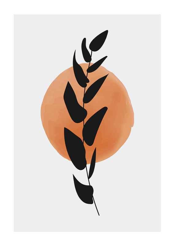 Sunset Branch-1