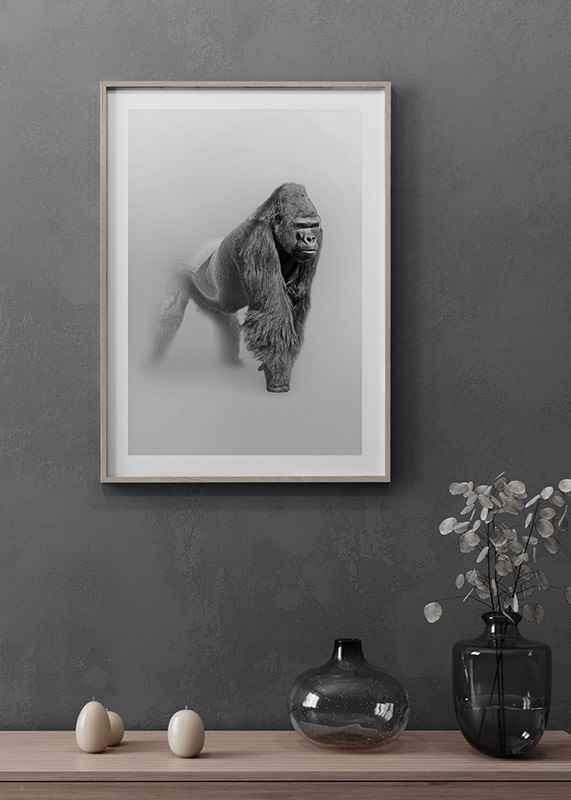 Faded Gorilla -4
