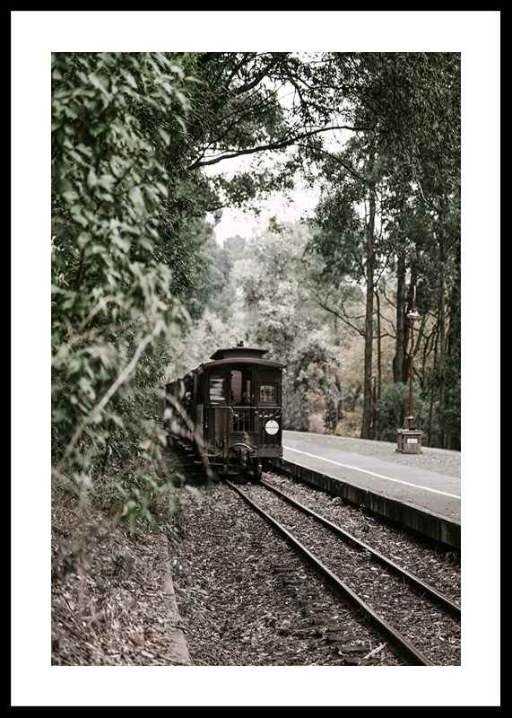 Train By Railroad