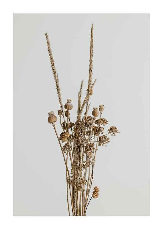 Dried Bouquet No1-1