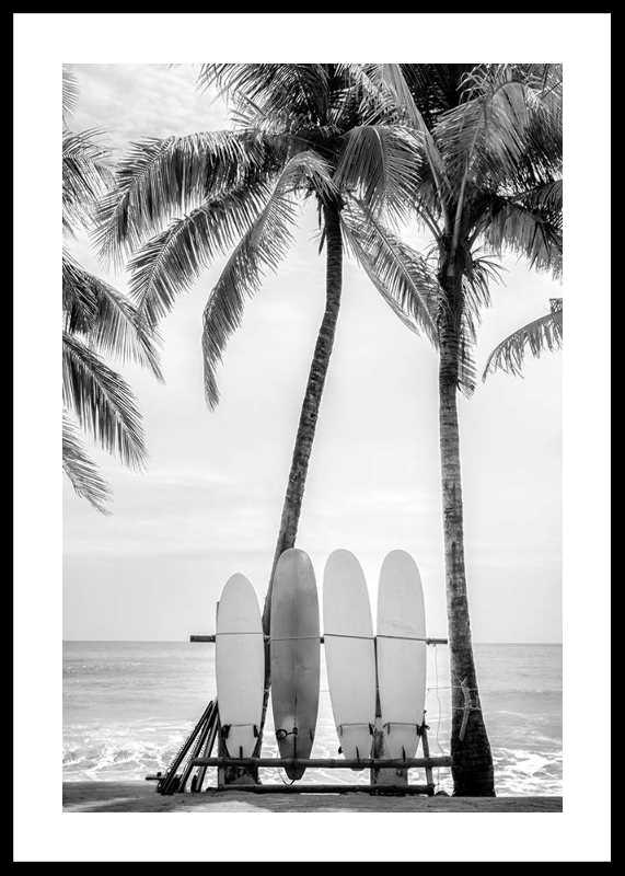 Surfing Boards On Beach