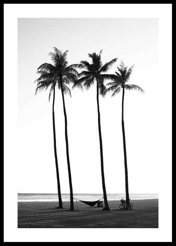 Palms On Beach-0