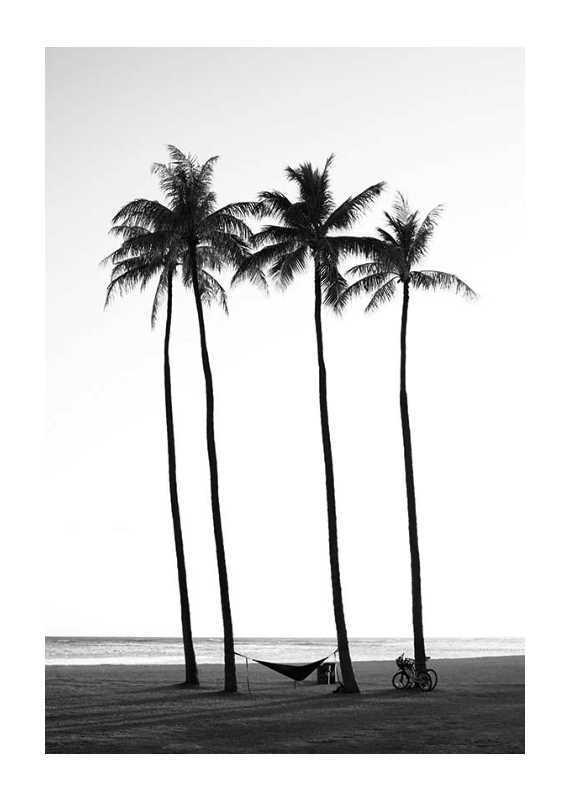 Palms On Beach-1